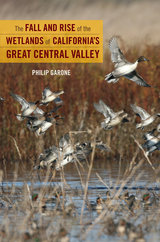 The fall and rise of the wetlands of california 39 s great for Garone habitat