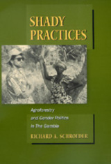 Shady Practices by Richard A. Schroeder