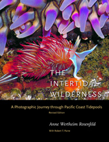 The Intertidal Wilderness by Anne Wertheim Rosenfeld