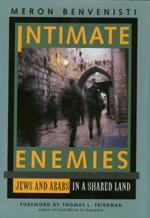 Intimate Enemies by Meron Benvenisti