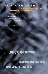 Steps under Water by Alicia Kozameh