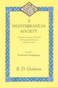 A Mediterranean Society, Volume I by S. D. Goitein