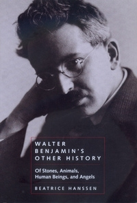 Walter Benjamin's Other History by Beatrice Hanssen