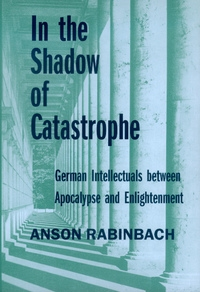 In the Shadow of Catastrophe by Anson Rabinbach