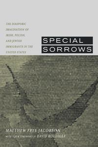 Special Sorrows by Matthew Frye Jacobson