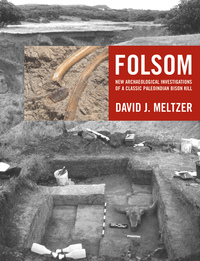 Folsom by David J. Meltzer