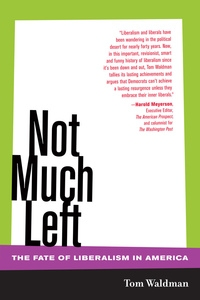 Not Much Left by Tom Waldman