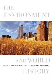 The Environment and World History by Edmund Burke III, Kenneth Pomeranz