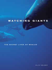Watching Giants by Elin Kelsey