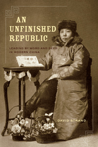 An Unfinished Republic by David Strand