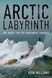 Arctic Labyrinth by Glyn Williams
