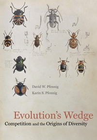 Evolution's Wedge by David Pfennig, Karin Pfennig