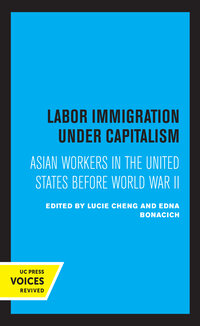 Labor Immigration under Capitalism by Lucie Cheng, Edna Bonacich