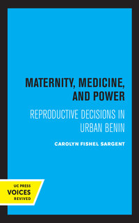 Maternity, Medicine, and Power by Carolyn Fishel Sargent