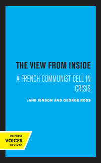 The View from Inside by Jane Jenson, George Ross