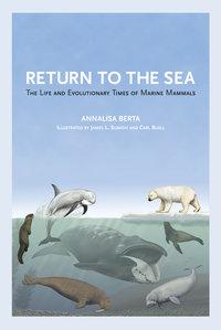 Return to the Sea by Annalisa Berta