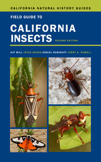 Field Guide to California Insects by Kip Will, Joyce Gross, Daniel Rubinoff, Jerry A. Powell