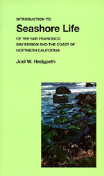 Introduction to Seashore Life of the San Francisco Bay Region and the Coast of Northern California by Joel W. Hedgpeth