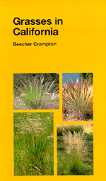 Grasses in California by Beecher Crampton