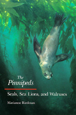 The Pinnipeds by Marianne Riedman
