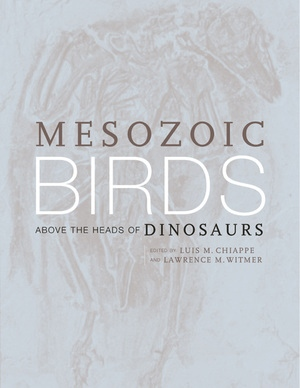 Mesozoic Birds by Luis M. Chiappe, Lawrence M. Witmer