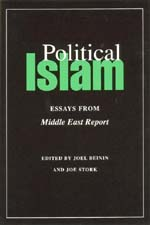 Political Islam by Joel Beinin, Joe Stork