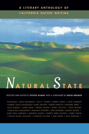 Natural State by Steven Gilbar