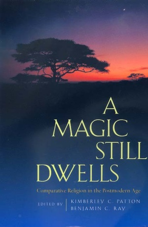 A Magic Still Dwells by Kimberley C. Patton, Benjamin C. Ray