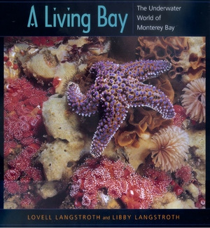 A Living Bay by Lovell Langstroth, Libby Langstroth