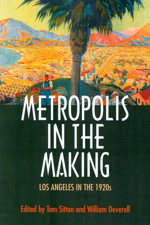 Metropolis in the Making by Tom Sitton