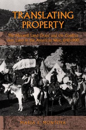 Translating Property by Maria E. Montoya