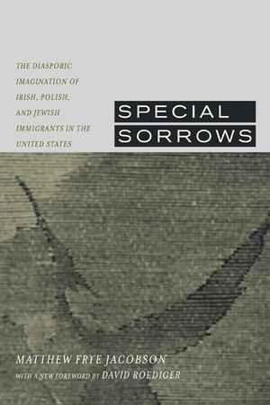 Special Sorrows by Matthew Frye Jacobson