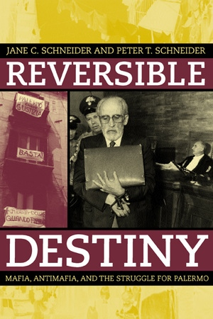 Reversible Destiny by Peter T. Schneider, Jane Schneider