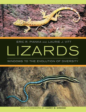 Lizards by Eric P. Pianka, Laurie J. Vitt