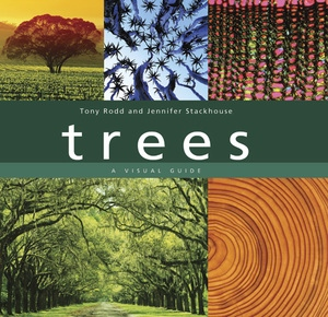 Trees by Tony Rodd, Jennifer Stackhouse