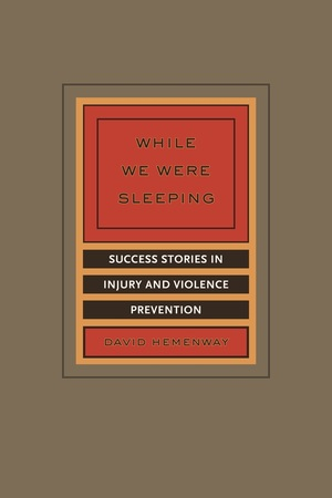 While We Were Sleeping by David Hemenway