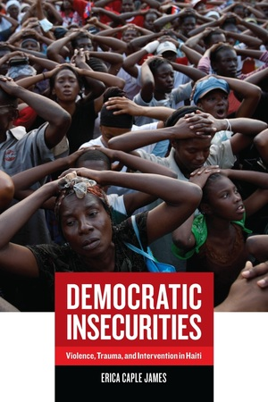 Democratic Insecurities by Erica James