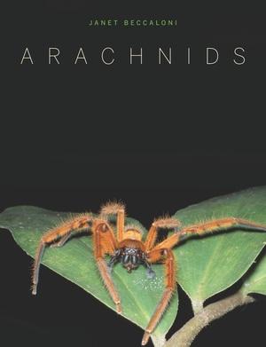 Arachnids by Janet Beccaloni