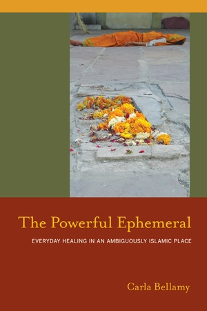 The Powerful Ephemeral by Carla Bellamy