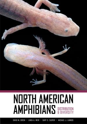 North American Amphibians by David M. Green, Linda A. Weir, Gary S. Casper