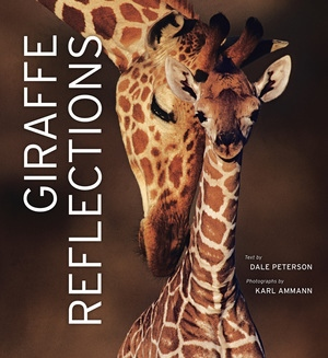 Giraffe Reflections by Dale Peterson