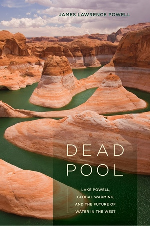 Dead Pool by James Lawrence Powell