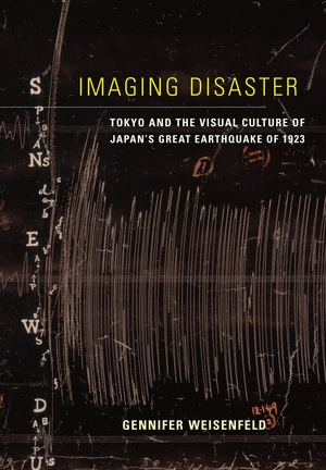 Imaging Disaster by Gennifer Weisenfeld