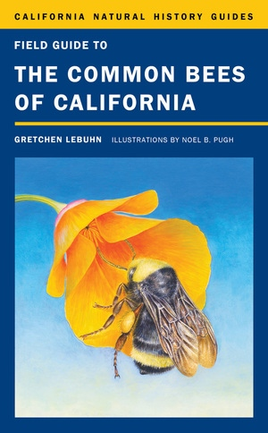 Field Guide to the Common Bees of California by Gretchen LeBuhn