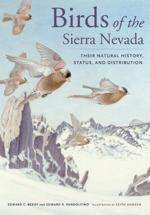 Birds of the Sierra Nevada by Ted Beedy, Ed Pandolfino