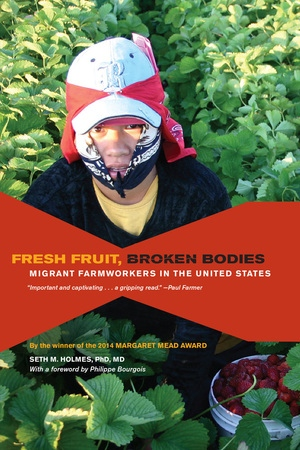 Fresh Fruit Broken Bodies By Seth Holmes Paperback University