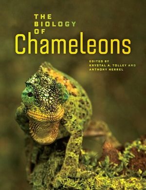 The Biology of Chameleons by Krystal A. Tolley, Anthony Herrel