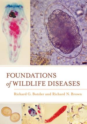 Foundations of Wildlife Diseases by Richard G. Botzler, Richard N. Brown