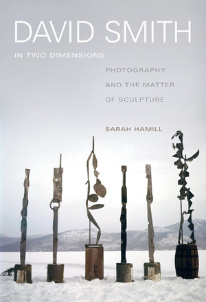 David Smith in Two Dimensions by Sarah Hamill