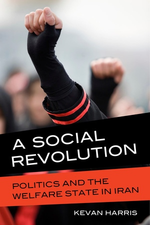 A Social Revolution by Kevan Harris